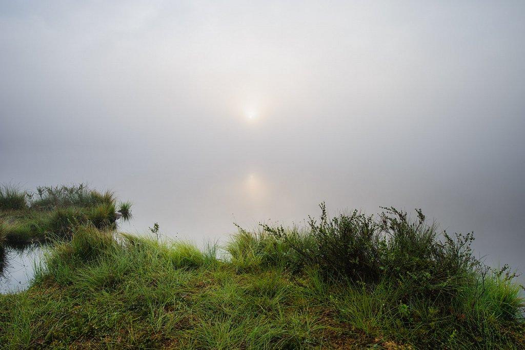 Fogged bog lake